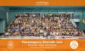 Sharath workshop Copenhagen 2017